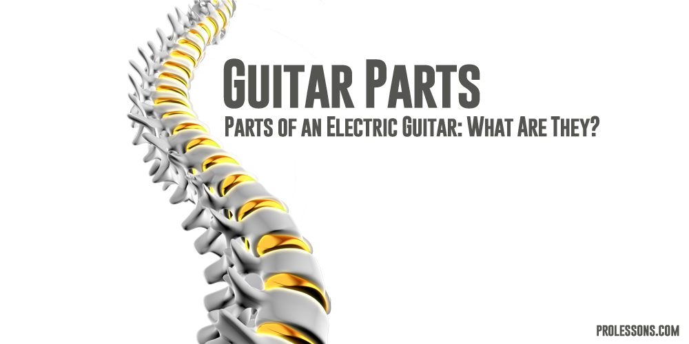 Parts of an Electric Guitar: What Are They?